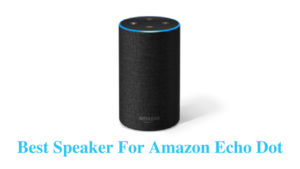 Best Speaker For Echo Dot (Top 10 List)