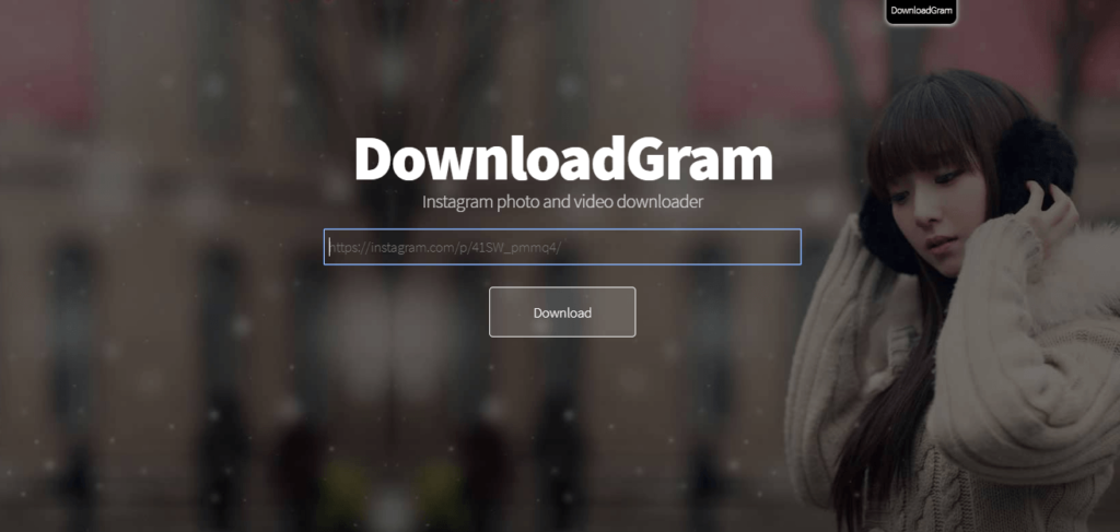 DownloadGram Instagram downloader