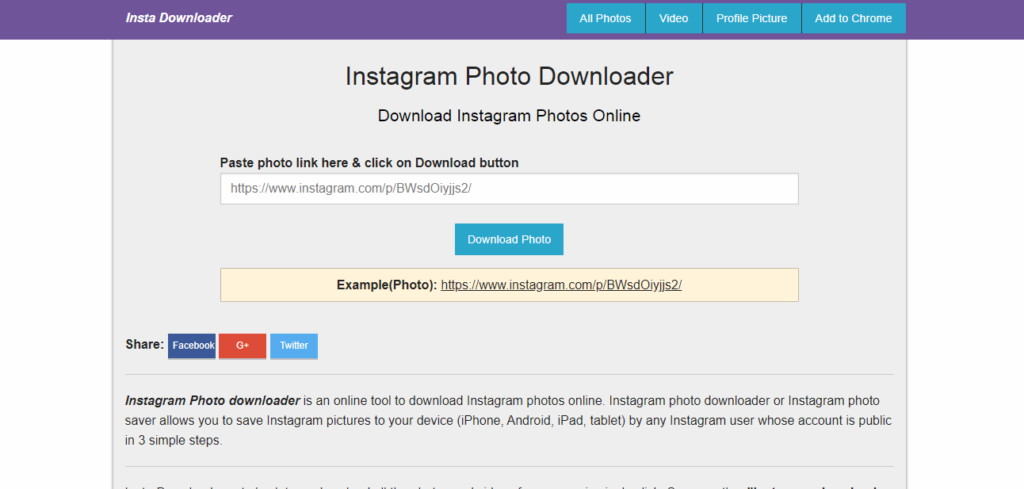 12 Best Instagram Downloader Online You Should Use