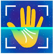 PALMISM app