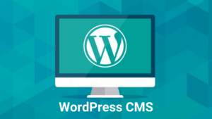 How to Use WordPress CMS (Beginner's Guide)