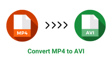 Convert MP4 to AVI
